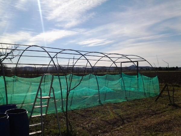 Riferimento MC5011 - Terreno Agricolo in Vendita a Marcignana