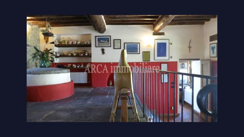 Rusticoin Vendita, Pietrasanta - Campagna - Riferimento: 2216