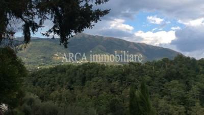 Rusticoin Vendita, Camaiore - Collina - Riferimento: 2635