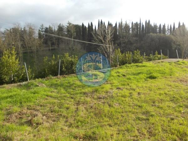 Riferimento SVM01 - Terreno Edificabile in Vendita a Casale Marittimo