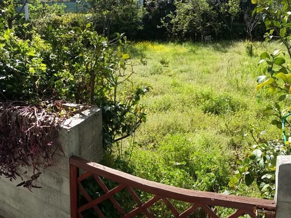 Riferimento 2L1.506 - Appartamento in Vendita a Torre Del Lago Puccini