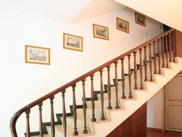 Riferimento SA550 Mauro - villa in Affitto in Forte Dei Marmi - Vittoria Apuana