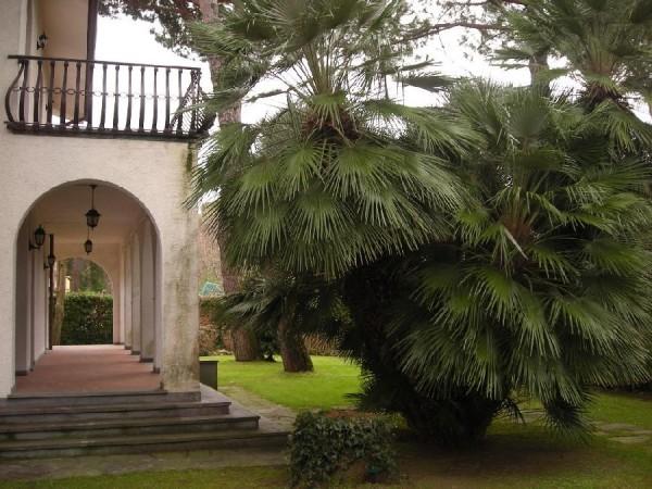 Villa Singola in affitto, Forte dei Marmi