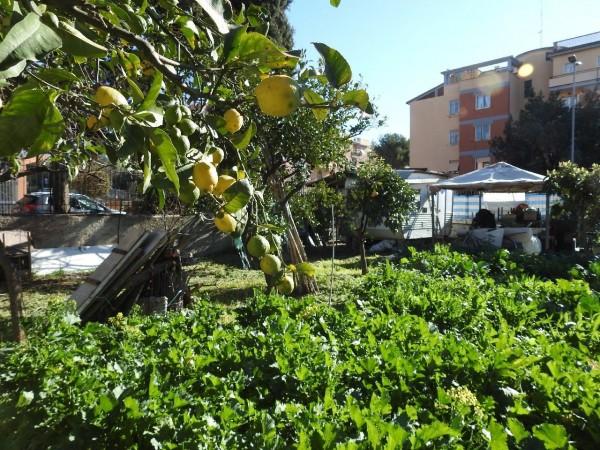 Riferimento C003_E - Terreno in Affitto a Civitavecchia