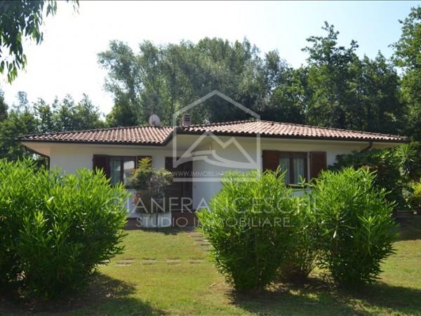 Riferimento 9503 - Villa Singola in Affitto a Cinquale