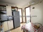 Appartamento in vendita, Seravezza - Querceta -  10