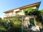 Appartamento in affitto, Forte Dei Marmi - Vittoria Apuana -   0
