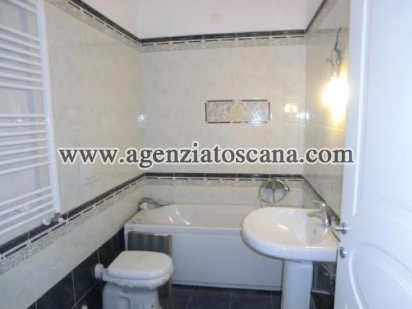 Apartment for rent, Pietrasanta - Centro -  1