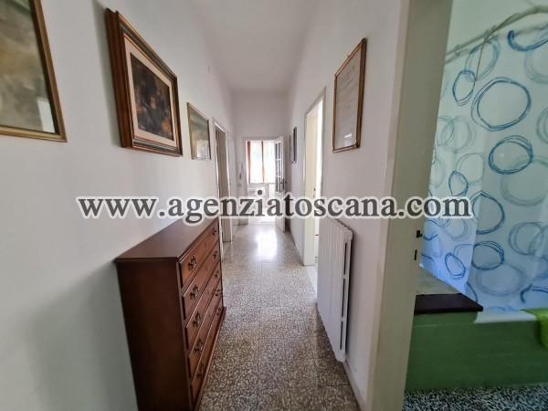 Villa Bifamiliare in affitto, Forte Dei Marmi - Vittoria Apuana -  15