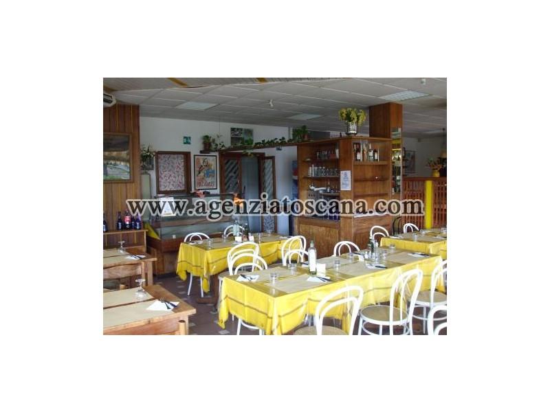 Attività Artigianale in vendita, Camaiore - Frazione Non Definita -  3