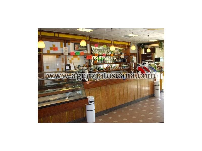 Attività Artigianale in vendita, Camaiore - Frazione Non Definita -  6
