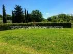Villa in vendita, Fauglia -  4