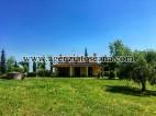 Villa in vendita, Fauglia -  3