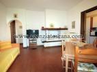 Appartamento in affitto, Seravezza - Querceta -  1