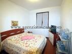 Appartamento in affitto, Seravezza - Querceta -  9