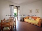 Appartamento in affitto, Seravezza - Querceta -  2