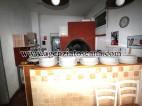 Attività Artigianale in vendita, Camaiore - Lido Di Camaiore -  24
