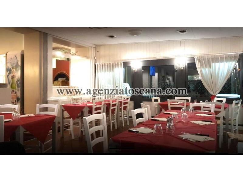Attività Artigianale in vendita, Camaiore - Lido Di Camaiore -  28