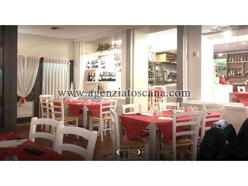Attività Artigianale in vendita, Camaiore - Lido Di Camaiore -  30