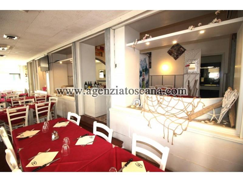 Attività Artigianale in vendita, Camaiore - Lido Di Camaiore -  9