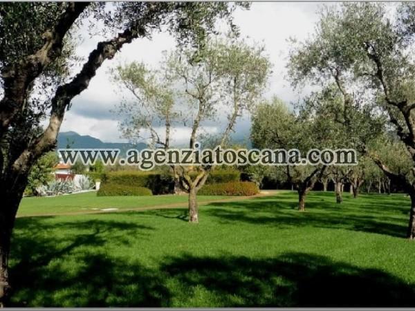 Villa With Pool for rent, Pietrasanta - Crociale -  2