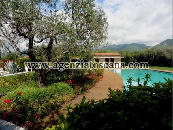 Villa Con Piscina in vendita, Pietrasanta - Crociale -  8