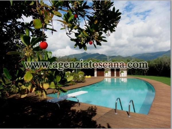 Villa With Pool for rent, Pietrasanta - Crociale -  6