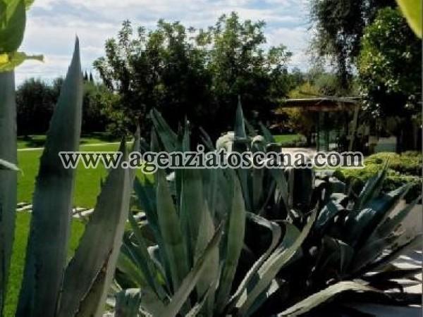 Villa With Pool for rent, Pietrasanta - Crociale -  22