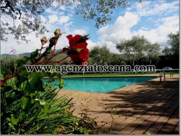 Villa Con Piscina in vendita, Pietrasanta - Crociale -  7