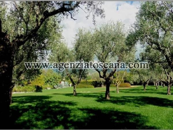 Villa Con Piscina in vendita, Pietrasanta - Crociale -  3