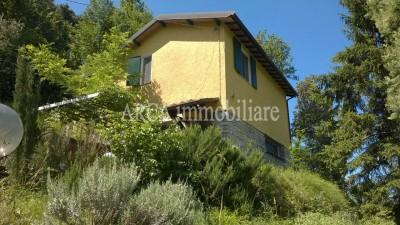 Villain Vendita, Camaiore - Monteggiori - Collina - Riferimento: 2226
