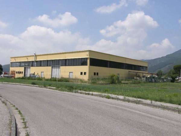 Riferimento 42 - Fondo Artigianale per Vendita in Barsiliana