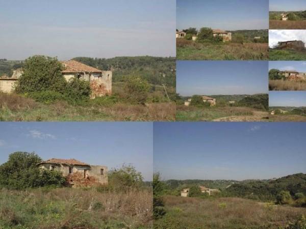 Riferimento 45 - Casa Colonica per Vendita in Palaia