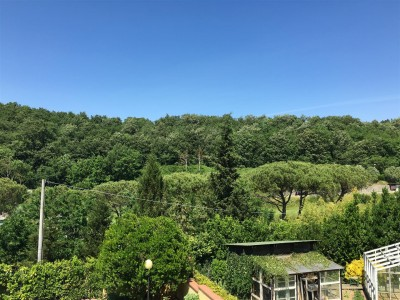Villa Bifamiliare In Vendita, Calcinaia - Riferimento: 601-foto3