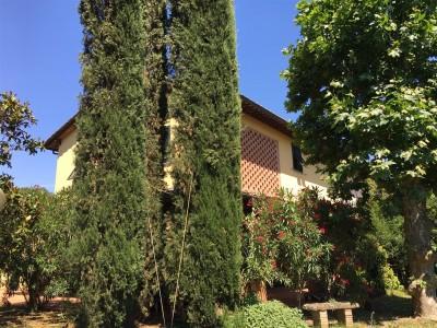 Villa Bifamiliare In Vendita, Calcinaia - Riferimento: 601-foto4