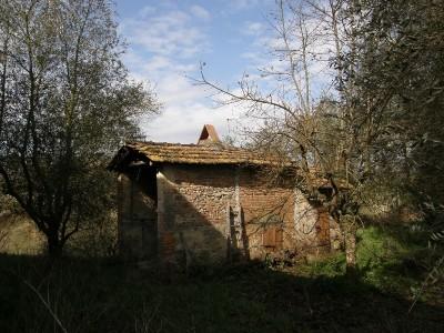 Casa Colonica In Vendita, Santa Maria A Monte - Cerretti - Riferimento: 316-foto2