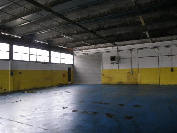 Riferimento 496 - Capannone per Affitto in Pontedera