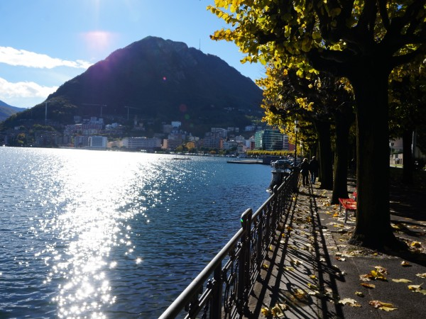 Ref. 475 - Shop for Sale in Lugano