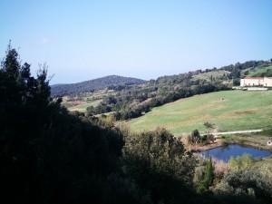 Appartamento in vendita a Rosignano Marittimo (Nibbiaia)