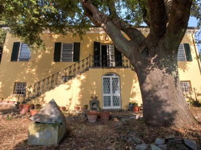 Villa Singola In Vendita, Vicopisano - Riferimento: 634-foto15