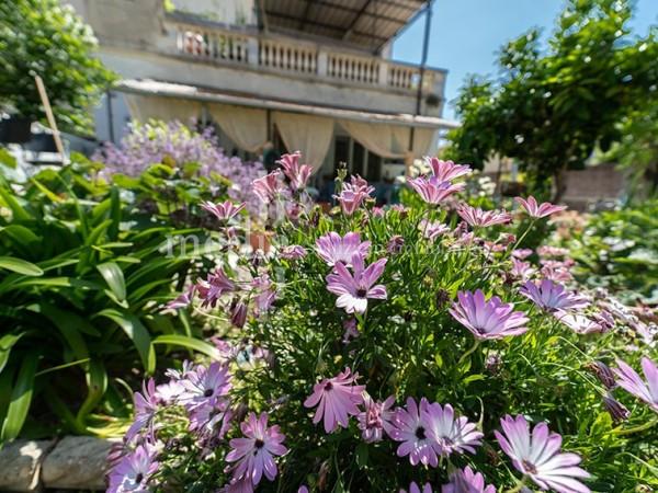 Riferimento 1731 - Appartamento in Vendita a Livorno