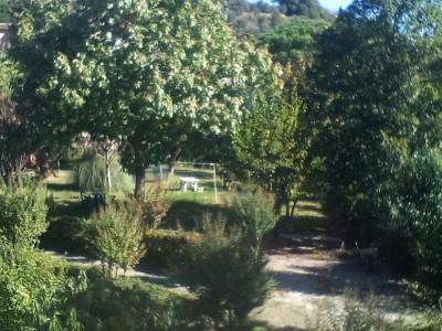 Terratetto In Vendita, Palaia - Alica - Riferimento: 638-foto13