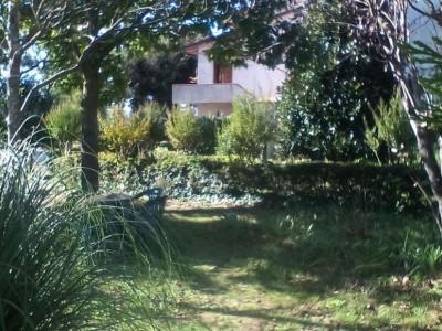 Terratetto In Vendita, Palaia - Alica - Riferimento: 638-foto18