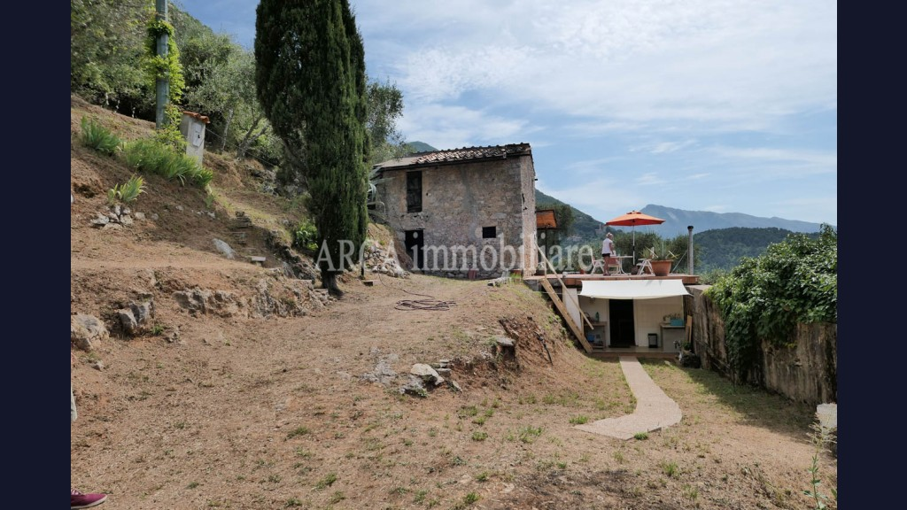 Rusticoin Vendita, Pietrasanta - Collina - Riferimento: 2819
