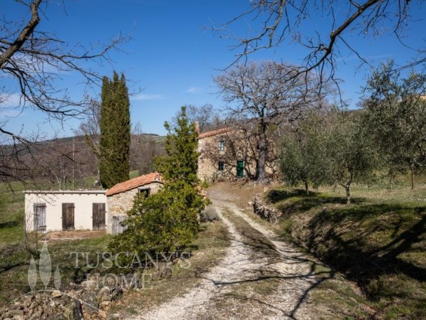 Reference VC415 - Farmstead for Sale in Castiglione D'orcia