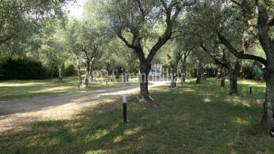 Villain Vendita, Seravezza - Campagna - Riferimento: 2841