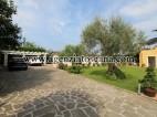 Villa Con Piscina in vendita, Pietrasanta -  8