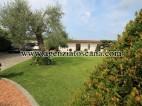 Villa Con Piscina in vendita, Pietrasanta -  5