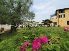 Villa Con Piscina in vendita, Pietrasanta -  3