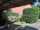 Appartamento in affitto, Forte Dei Marmi - Caranna -  3